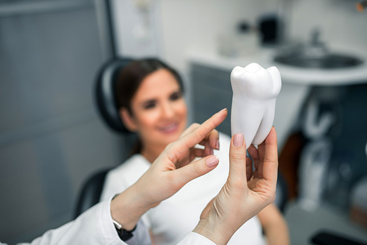 patient and orthodontist
